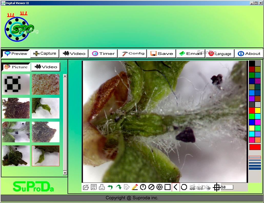 Mikroskopie und endoskopie mit digitalen instrumenten für den pc
